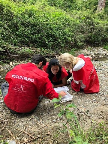 CUIDEMOS COLLSEROLA - Actividad de voluntariado ambiental