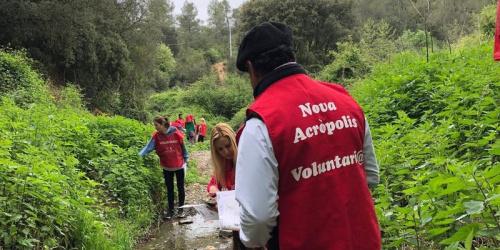 *Proyecto Ríos* Voluntariado Ecológico en la riera de Vallvidrera